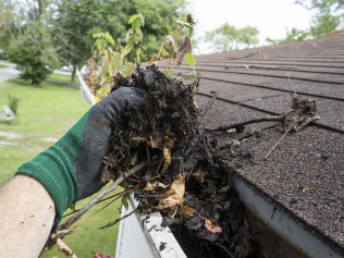 Gutter Cleaning & Maintenance